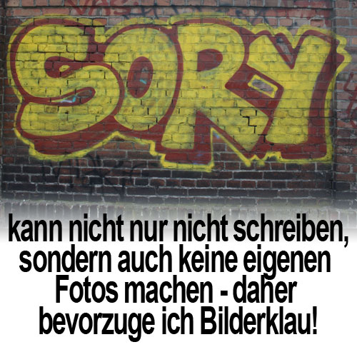 teuflischer_biker_schrott